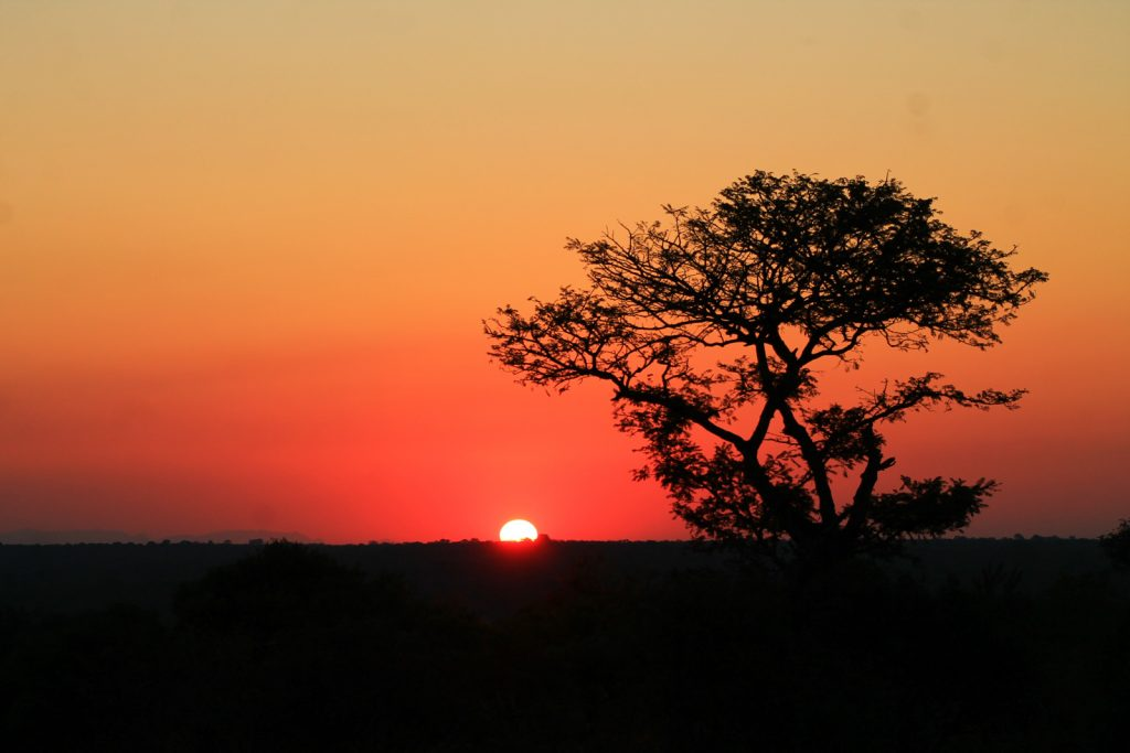 African sunset with escap+aid